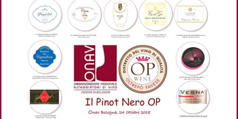 Degustazione Metodo Classico OP con ONAV Bologna e Distretto (24 ottobre 2018)