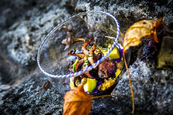 Cjcchetto con moscardino cotto alla brace, peperonata al nero, avocado e salsa ai ricci di mare