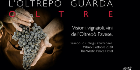 Oltrepò Pavese tasting by AIS MIlan (Milan, 05/10/2020)