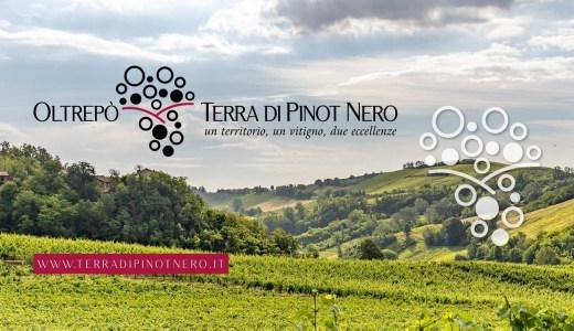 Oltrepò - Terra di Pinot Nero (27/06/2021)